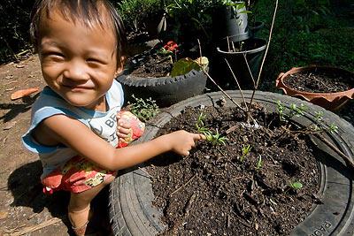 น้องเปรม กับแปลงผักเล็กๆ ที่ทำเอง โครงงานปลูกผัก ส่งคุณครู โรงเรียนอนุบาล บ้านวังทอง รังสิต คลองสอง